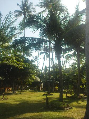 Nautilus Resort: Well maintained grounds