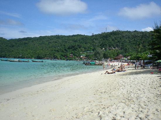 Phi Phi Islands Beaches Loh Dalum Tonsai Bay Long Beach: Picture Of Ko Phi Phi Don, Krabi Province