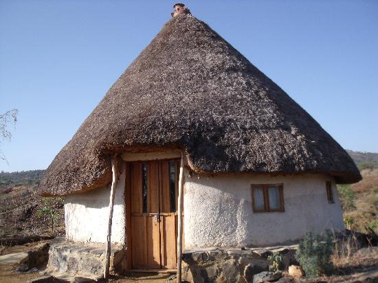 Strawberry Fields Eco-Lodge: My 'tukul'