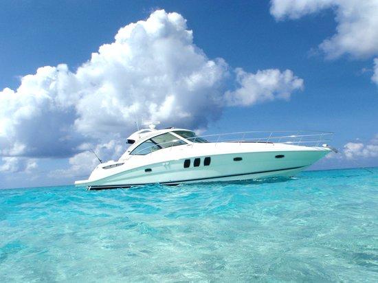 Deluxe Stingray City Sandbar Tour Grand Cayman through