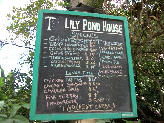 The Lily Pond House Hotel: the feast