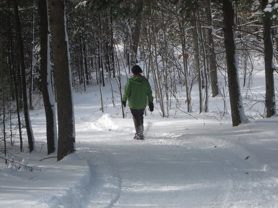 Beech Hill X-Country Ski & Snowshoe Center