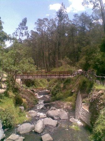 Imbabura Province, Ecuador: camino cascada peguche