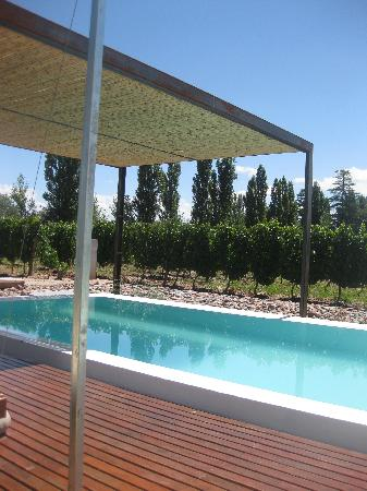 El Aguamiel: pool