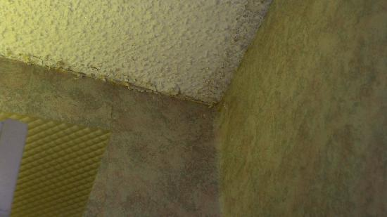 Comfort Inn: mildew & peeling paint