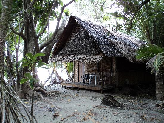 Kosrae Village Ecolodge & Dive Resort: My room