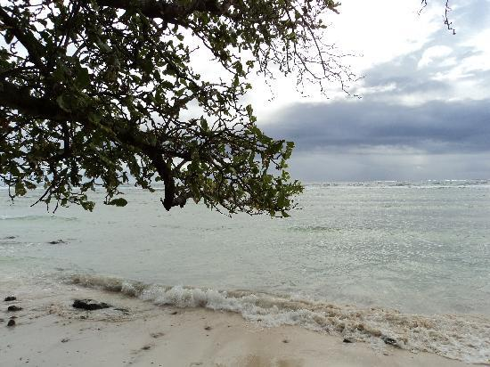 Kosrae Village Ecolodge & Dive Resort: Beach views