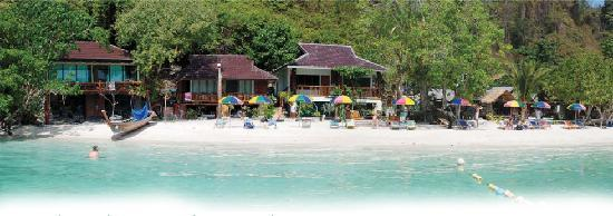 Phi Phi Popular Beach Resort : The beach and Bungalows
