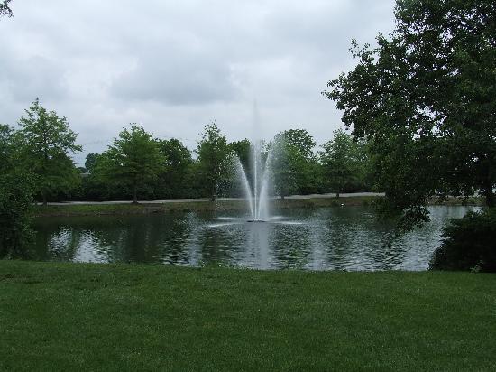 Hilton Lexington Suites: The Fountain