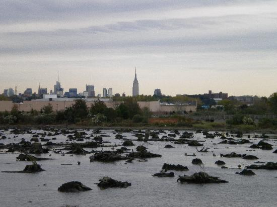 Holiday Inn Secaucus Meadowlands: View of Manhattan from Mill Creek Marsh