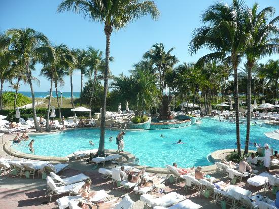 Pool Picture Of Loews Miami Beach Hotel Miami Beach Tripadvisor