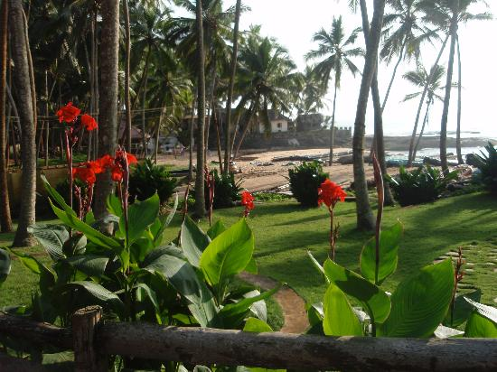 Coconut Bay Beach Resort: view of grounds