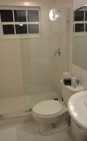751 Meridian Apartments: The shower