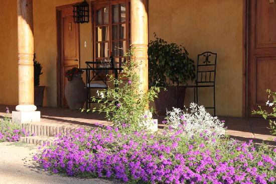 Posada Colchagua: Flowers