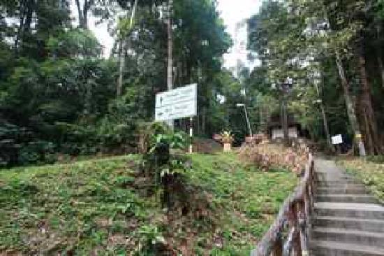 Telaga Tujuh Waterfalls: The climb