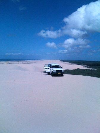 Port Stephens, ออสเตรเลีย: Sand Dunes Stockton Beach