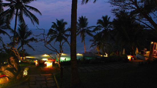 Niraamaya Retreats: dusk at the pool