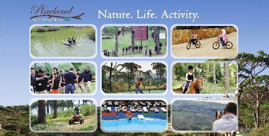 Pineland Hotel and Health Resort: Nature. Life. Activity.