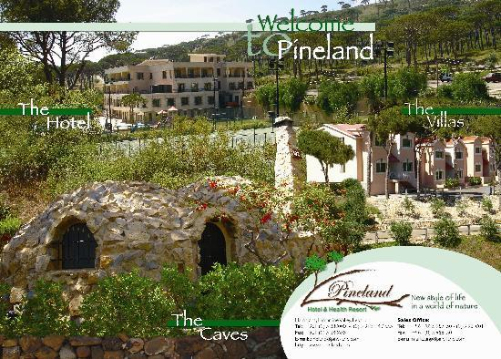Deir El Harf, Libano: Pineland Hotel and Health Resort