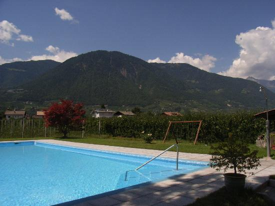 Pension Sonnenhof: Schwimmbad