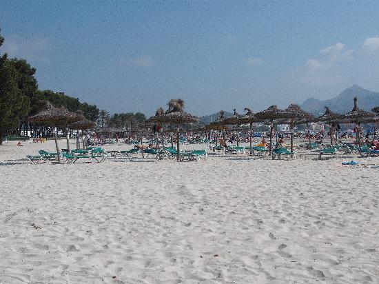 Hotels Near Alcudia Beach