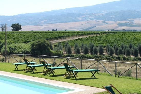 Agriturismo Il Poggione: magnificent view from the pool