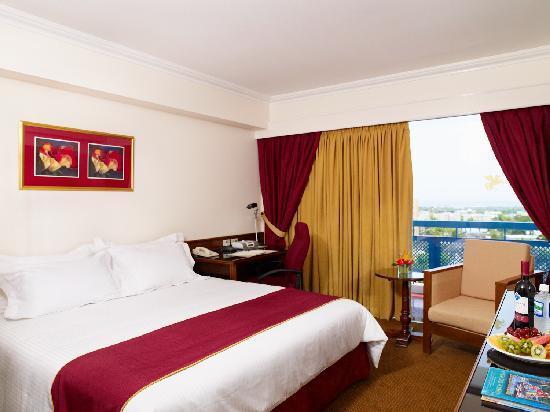 더 자메이카 페가수스 호텔