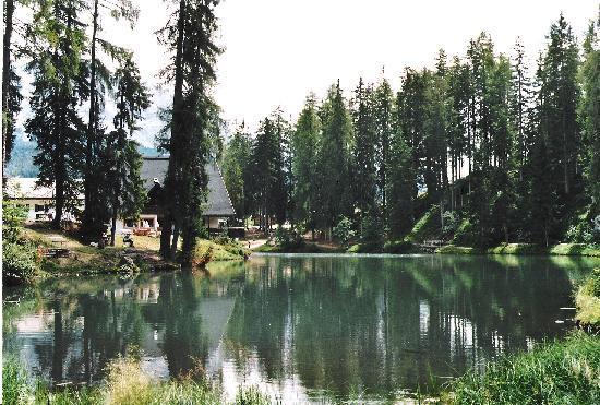 Hotel Lech da Sompunt: lago