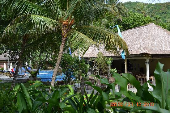 Bayside Bungalows Candidasa : pool & restaurant