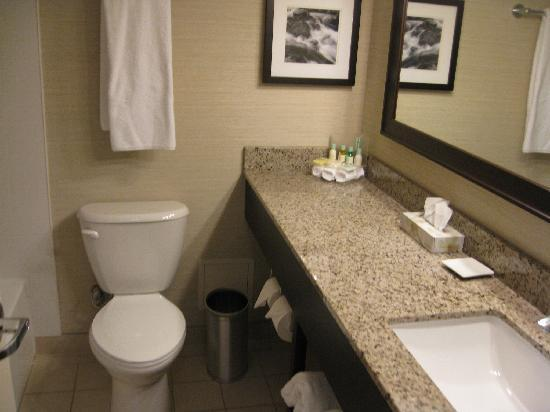 Delta Hotels by Marriott Sault Ste. Marie Waterfront: bathroom