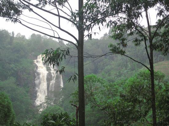 Waterfalls Homestay: view from our terrace