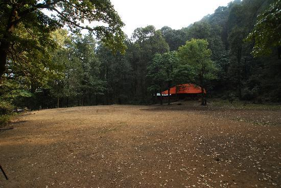 Ayar Jungle Camp : Camp ground