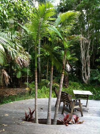 Planula B&B Retreat: very tropical garden & deck