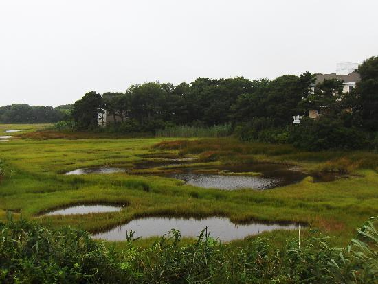 Cape Cod Ocean Manor : view from the deck - the marsh out to Nantucket Sound