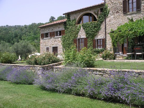 Umbrien, Italien: Lavender in Bloom