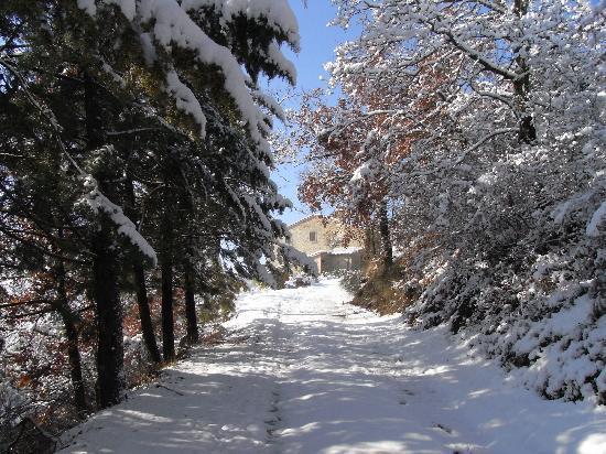 Casa Panfili: Winter at Panfili