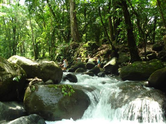La Fortuna de San Carlos, Costa Rica: Stream River