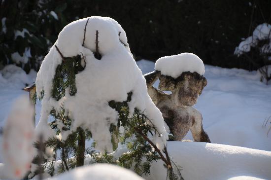 Im Röseligarten: 1. Bild vom verschneiten Garten