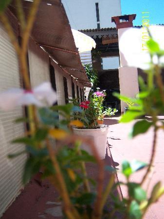 OHO de San Telmo: terraza