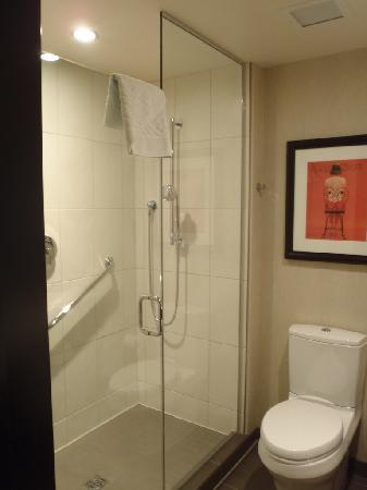 theWit - A DoubleTree by Hilton: great shower