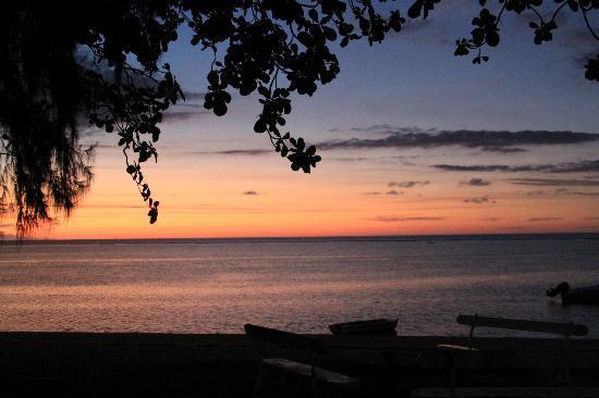 Les Lataniers Bleus: Le coucher de soleil ...