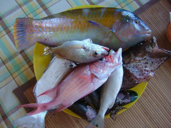 Posada Casa Mejillon: Pescado fresco listo para comer al estilo Margariteño