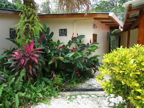 Nosara Paradise Rentals: casa privada