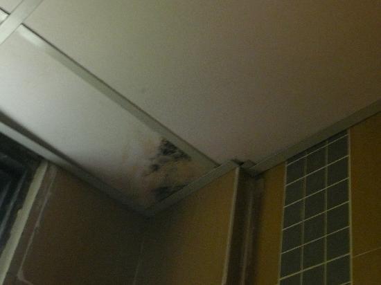 The Lanai Langkawi Beach Resort: Black spot mould in bathroom