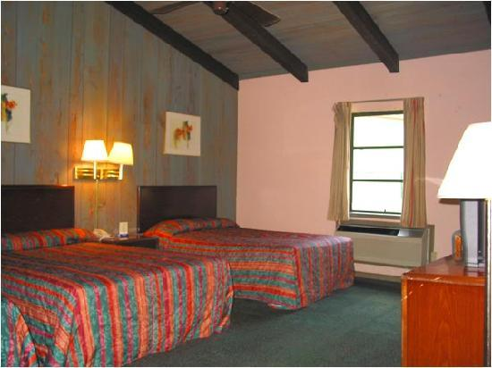 Suwannee Gables Motel and Marina: Cabin Room