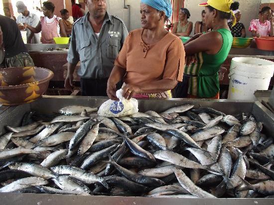 Mindelo, Kap Verde: al mercato del pesce
