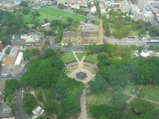 Hyde Park Inn: View