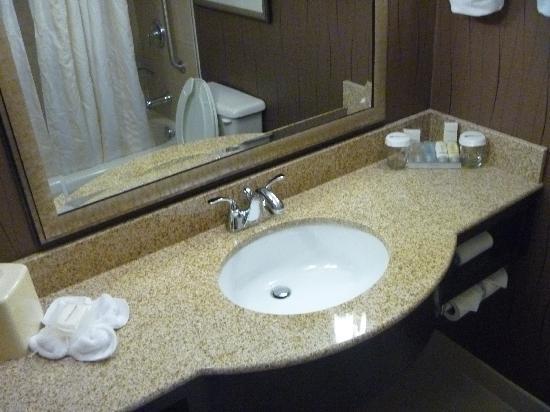 Hilton Garden Inn Raleigh-Durham Airport: Bathroom