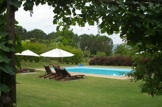POGGIO SALVI Agriturismo: Swimming pool in extensive gardens