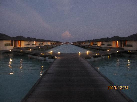 Paradise Island Resort & Spa: Night View